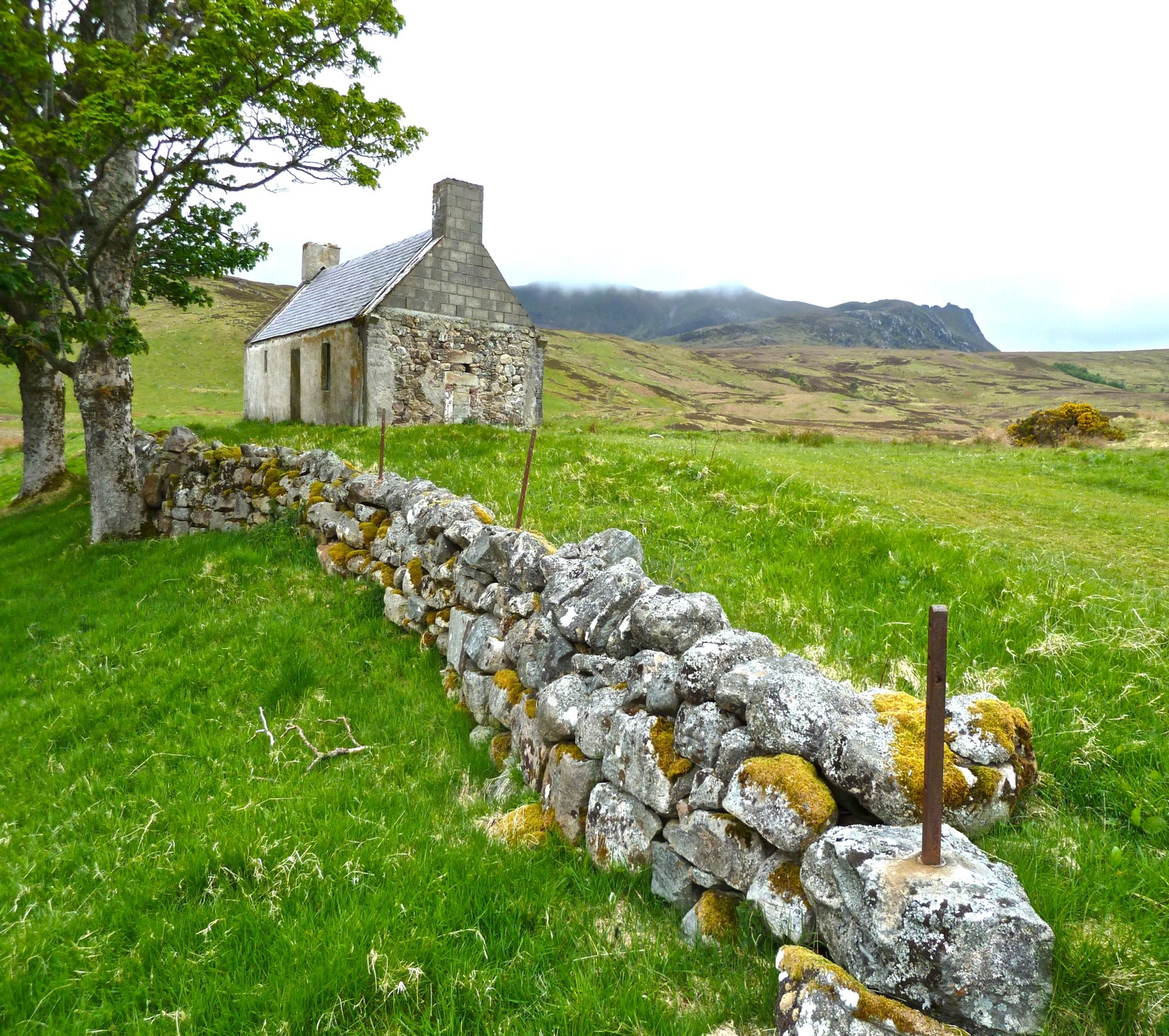Irish Stone Wall with old Farm House